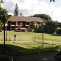 kapiolani :: Kapiolani Community College