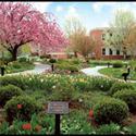 campus :: York College Pennsylvania