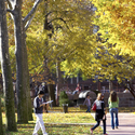 Brooklyn campus in Fall :: Pratt Institute-Main