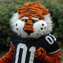 AuburnTigers :: Auburn University