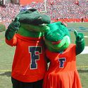 UFGators :: University of Florida