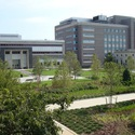 Harriman Quad on the university's South Campus :: University at Buffalo