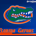 logo :: University of Florida