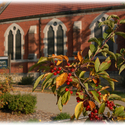 Alumni hall and berries :: University of Dubuque