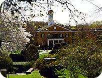 Long Island University Enrollment