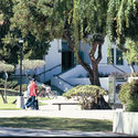 College Campus :: Los Angeles Pierce College