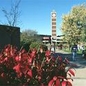 University Campus :: University of Louisville
