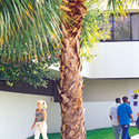 Campus Building :: Northwood University-Florida