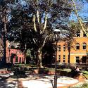 campus :: Pratt Institute-Main