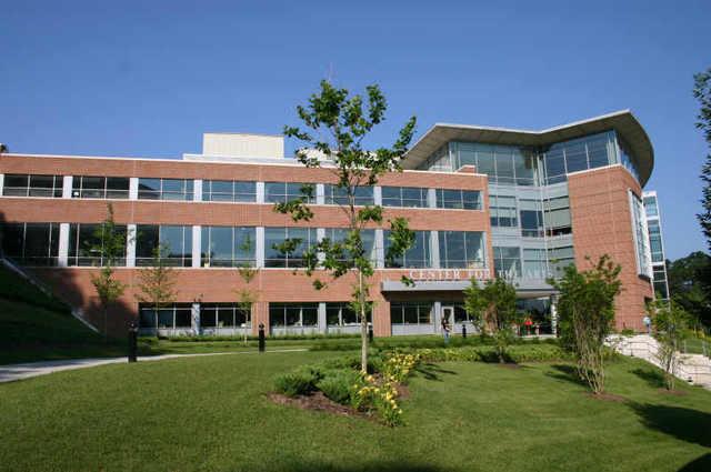Towson :: Towson University
