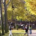 Brooklyn campus in Fall :: Pratt Institute-Main