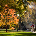 Wofford College Campus in Fall :: Wofford College
