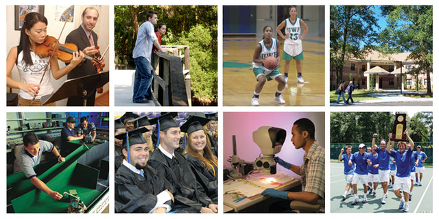 "UWF was named a Best Southeastern College by ""Princeton Review"". :: The University of West Florida"