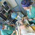 Nurse Anesthesia Students :: Carolinas College of Health Sciences