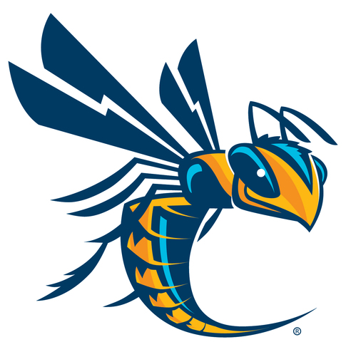 New Cedarville University Athletic Logo :: Cedarville University