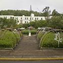 University of Puerto Rico-Cayey