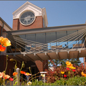 University building :: Armstrong Atlantic State University