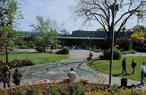 Plover Library :: Santa Rosa Junior College