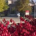 University of Cincinnati-Clermont College