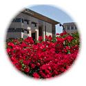California State University-San Marcos 2
