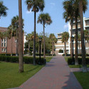 Palm Court :: Loyola University New Orleans