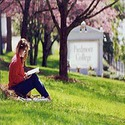 sign :: Piedmont College