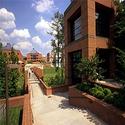 North Carolina State University at Raleigh 2