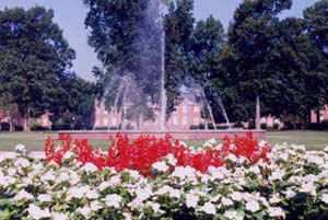 Braswell fountain :: North Carolina Wesleyan College