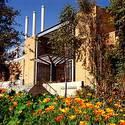 Bourns poppies :: University of California-Riverside
